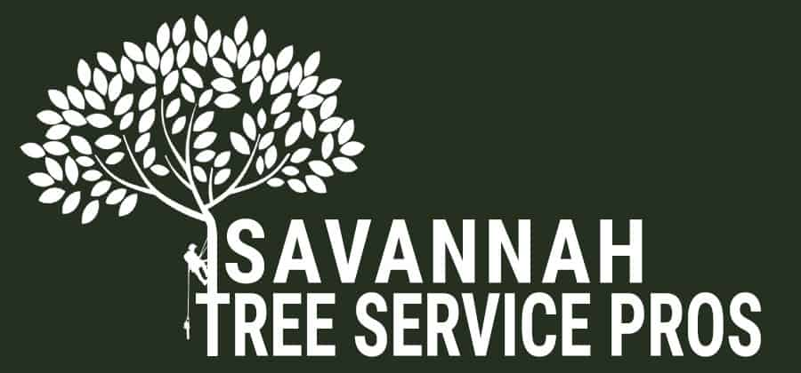 Savannah Tree Service Pros White
